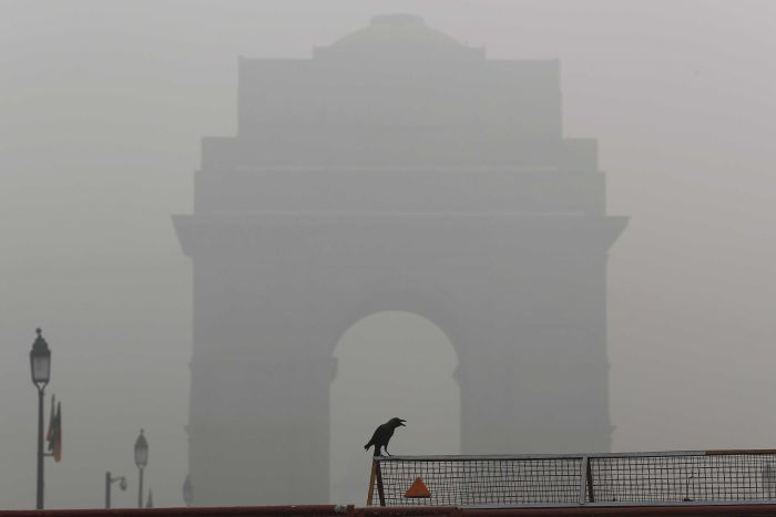 Delhi's unhealthy environment